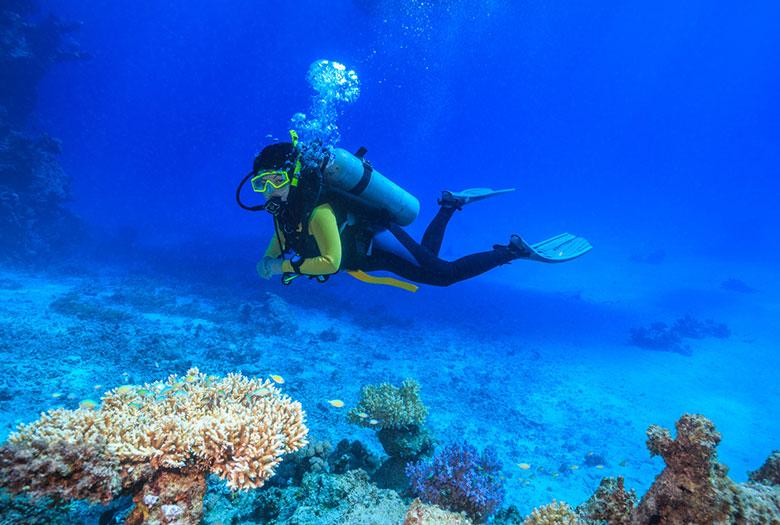 Scuba Diving at Key Largo, Florida